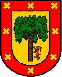 APELLIDO RAMÍREZ